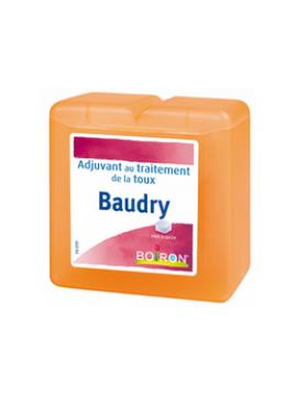 Baudry pâtes Boiron