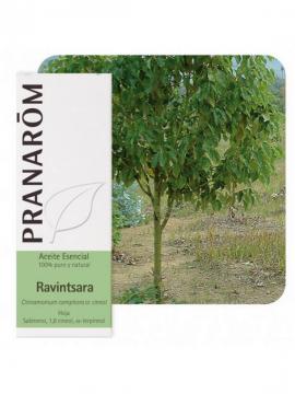 Ravintsara 10ml aceite esencial Pranarom