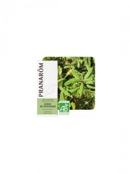 Té de labrador 5ml aceite esencial Pranarom